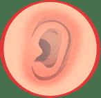 Одним изсамых частых осложнений насморка удетей является воспаление среднего уха. Почему?